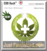Dutch Passion CBD Kush Female 10 Seeds